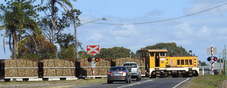 A Queensland cane train crosses a main road east of Bundaberg